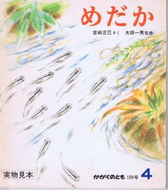 めだか かがくのとも 通巻109号(1978年4月号)
