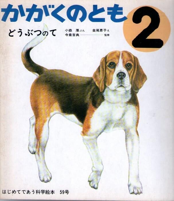 どうぶつのて かがくのとも 通巻59号 (1974年2月号) はじめてであう科学絵本 ※折り込みふろくあり