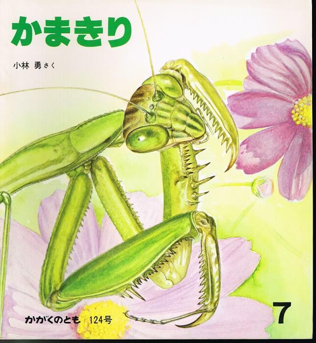 かまきり かがくのとも 通巻124号 (1979年7月号)