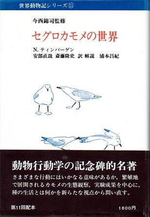 世界動物記シリーズ 11 セグロカモメの世界